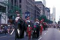 Schultz and Elephants perform in Chicago Parade.JPG