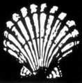 Shell logo 1904.png