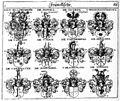 Siebmacher 1701-1705 E088.jpg