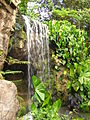 Singapore Botanic Gardens waterfall.jpg
