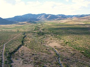 Peloncillo Mountains (Cochise County) - Image: Skeleton Canyon