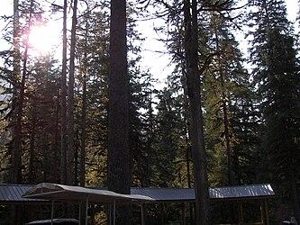 Sled Dog Discovery & Musher's Camp 19.jpg