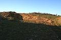 Small limestone pit near Irnham - geograph.org.uk - 328287.jpg
