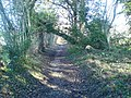 Snag Lane - geograph.org.uk - 741598.jpg