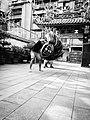 Snapshot, Taipei, Taiwan, 台北大龍峒金獅團, 樹人書院文昌祠, 隨拍, 台北, 台灣 (18803169873).jpg