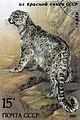 Snow leopard marks1.jpg