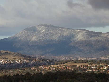 Light snow on Mount Tennent, which features dry sclerophyll woodlands. Snow on Mount Tennent during July 2013.jpg