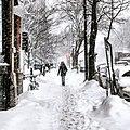 Snow storm walk.jpg