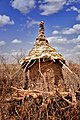 Sorghum Silo, Dassanech, Ethiopia (15091614340).jpg