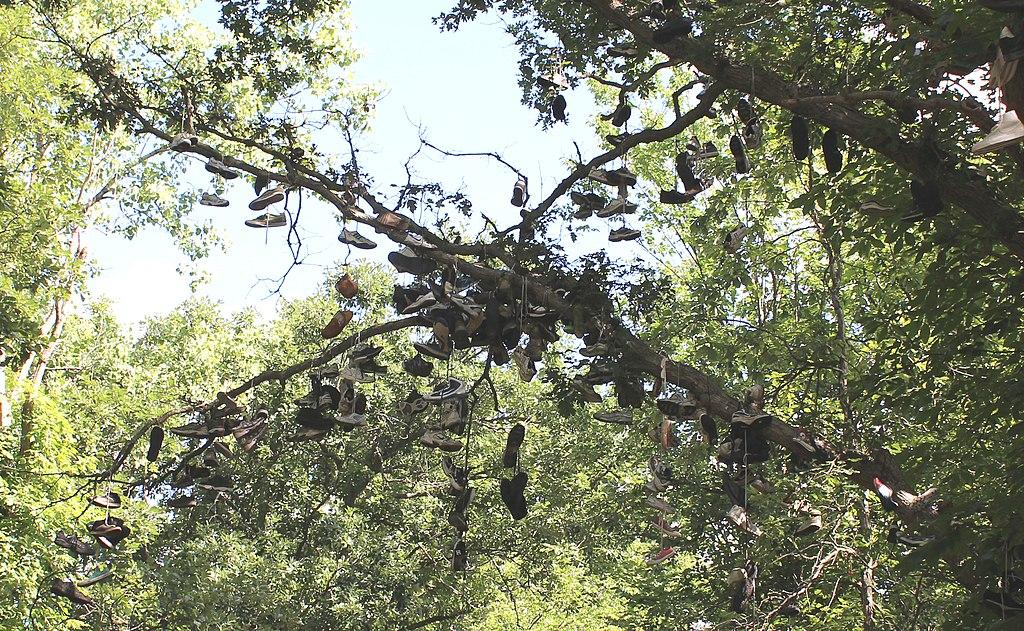 Shoe Tree Size