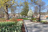 Spring 2006.jpg
