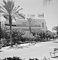 Stadspark met palmbomen, vermoedelijk Diezengoff Circle Square, Bestanddeelnr 255-1748.jpg