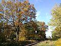 Stary Węgliniec - linia kolejowa i sygnalizator.jpg