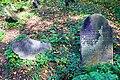 Stary cmentarz żydowski w Cieszynie7.JPG