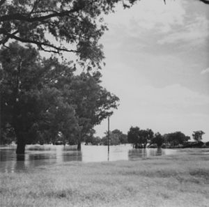 Barcoo River - Flood in the Barcoo River, Blackall district, February 1941