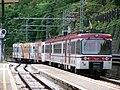 Stazione di Dermulo ET Firema 20100811.jpg