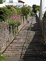 Steps to Vane Hill Road, Torquay - geograph.org.uk - 821388.jpg
