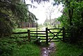 Stile and Gate, Moss Plantation - geograph.org.uk - 1336211.jpg