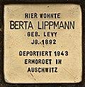 Stolperstein für Berta Lippmann (Cottbus).jpg