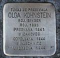 Stolperstein für Olga Kohnstein.JPG