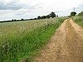 Stratton St Michael - Boudica's Way - geograph.org.uk - 1362288.jpg