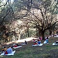 Students read literary books on the hill of Dasyllio in Patras.jpg