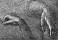 Study-Mona Lisa hands.png