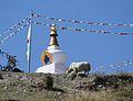 Stupa, phedi, annapurna national park.JPG