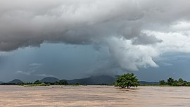 Submerged tree under a dark and cloudy sky in Si Phan Don.jpg