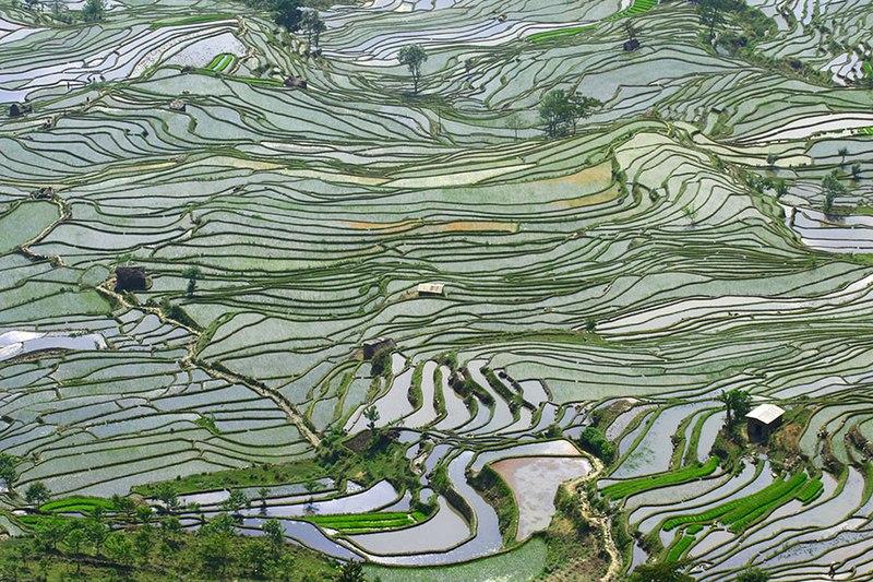File:Subsistent Farming Southern China 1.jpg