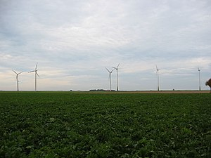 Jülich-Zülpich Börde - Sugar beet field and wind farm near Linnich