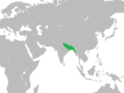 At its greatest extent, the Bengal Sultanate's realm and protectorates stretched from Jaunpur in North India in the west to Tripura and Arakan in the east