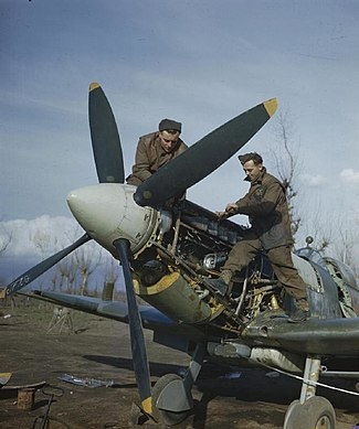 Supermarine Spitfires of the Royal Air Force in Italy, January 1944 TR1537.jpg