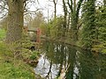 Swift Valley Nature Reserve, old canal arm (4).jpg