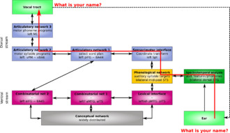 Two-streams hypothesis - repetition of the phrase 'what is your name?' in the extended version of Hickok and Poeppel's dual pathway model