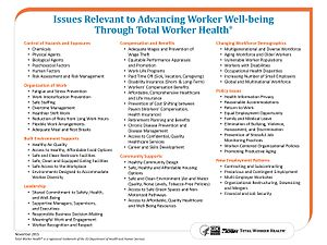 Total Worker Health - Issues Relevant to Advancing Worker Well-Being Through Total Worker Health