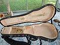 Tacoma M1 mandolin case opened.jpg