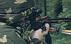 Taking Aim In A Crossbow.jpg