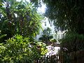 Tampa Stovall House04.jpg