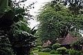 Tarangire 2012 05 27 1901 (7468514888).jpg