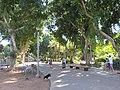 Tel Aviv, Israel - 2018-11-02 - IMG 1921.jpg