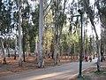 The National Park (Ramat Gan)023.jpg