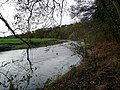 The River Ayr at Stair - geograph.org.uk - 1038215.jpg