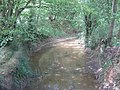The River Beult in Cook Wood - geograph.org.uk - 1421712.jpg