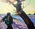 The Sower (Arles, November 1888) - My Dream.jpg