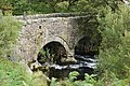 The bridge over Afon Ogwen - geograph.org.uk - 1476005.jpg