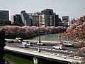 "The famous view point of cherry blossoms ""Chidori-ga-fuchi"" - panoramio.jpg"