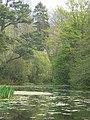 The lake in Wayford Wood - geograph.org.uk - 450686.jpg