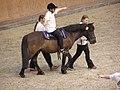 Therapeutic horseback riding 2.JPG