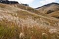 Tonomine highland Kamikawa Hyogo pref Japan08n.jpg
